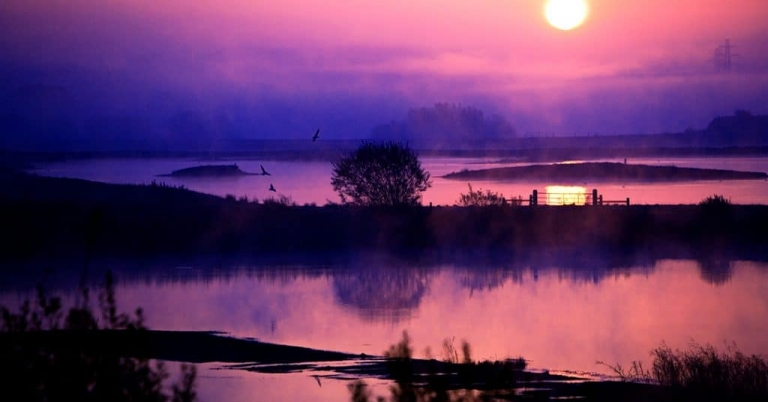 Old Moor, sunrise, misty morning, rspb, springwatch, bbc